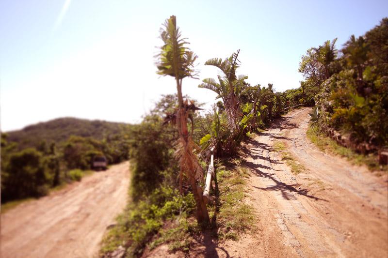 IMG_2270-Editchintsa,-denstoraresan,-roadtrip,-sydafrika,-wildcoast