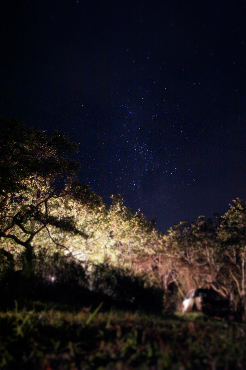 IMG_2350-Editchintsa,-denstoraresan,-roadtrip,-sydafrika,-wildcoast