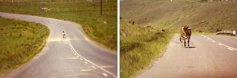 IMG_2484-Editbilfoto,-denstoraresan,-roadtrip,-sydafrika,-wildcoast