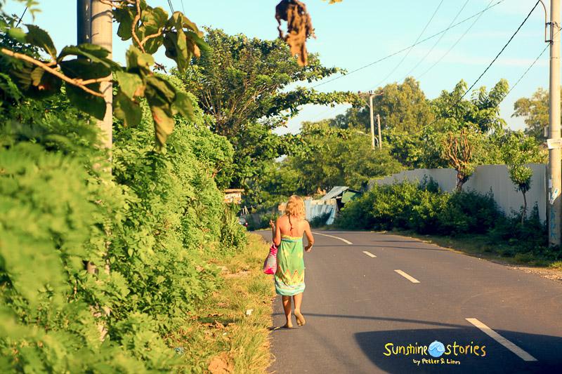 tourist history: indo dreams