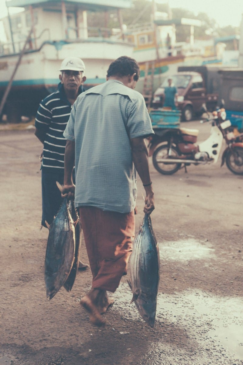 Sri-Lanka-Dondra-Fish-Market-Sunshinestories-Blog-Photos-5509