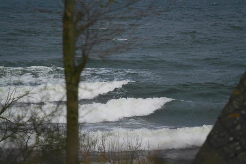 Surf-Österlen-Skåne-IMG_6659