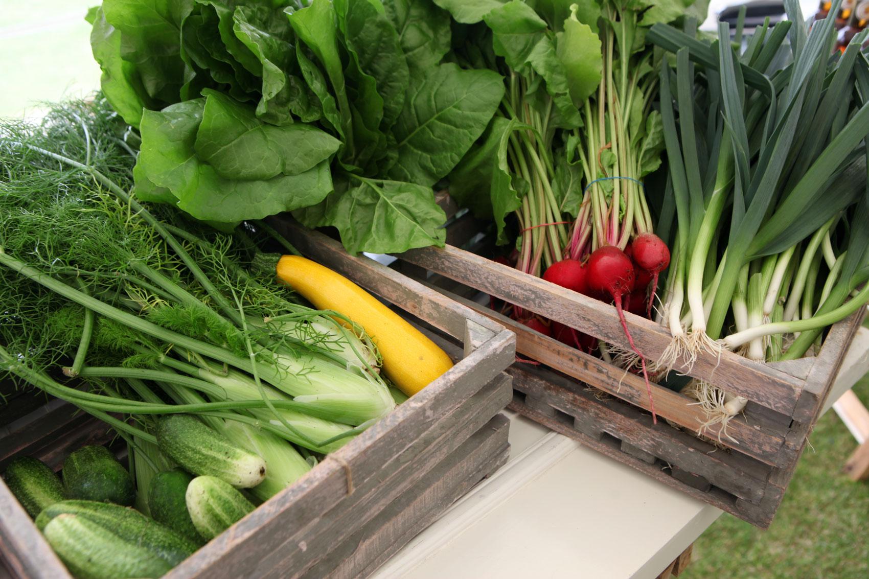 farmers_market_torekov_IMG_1018