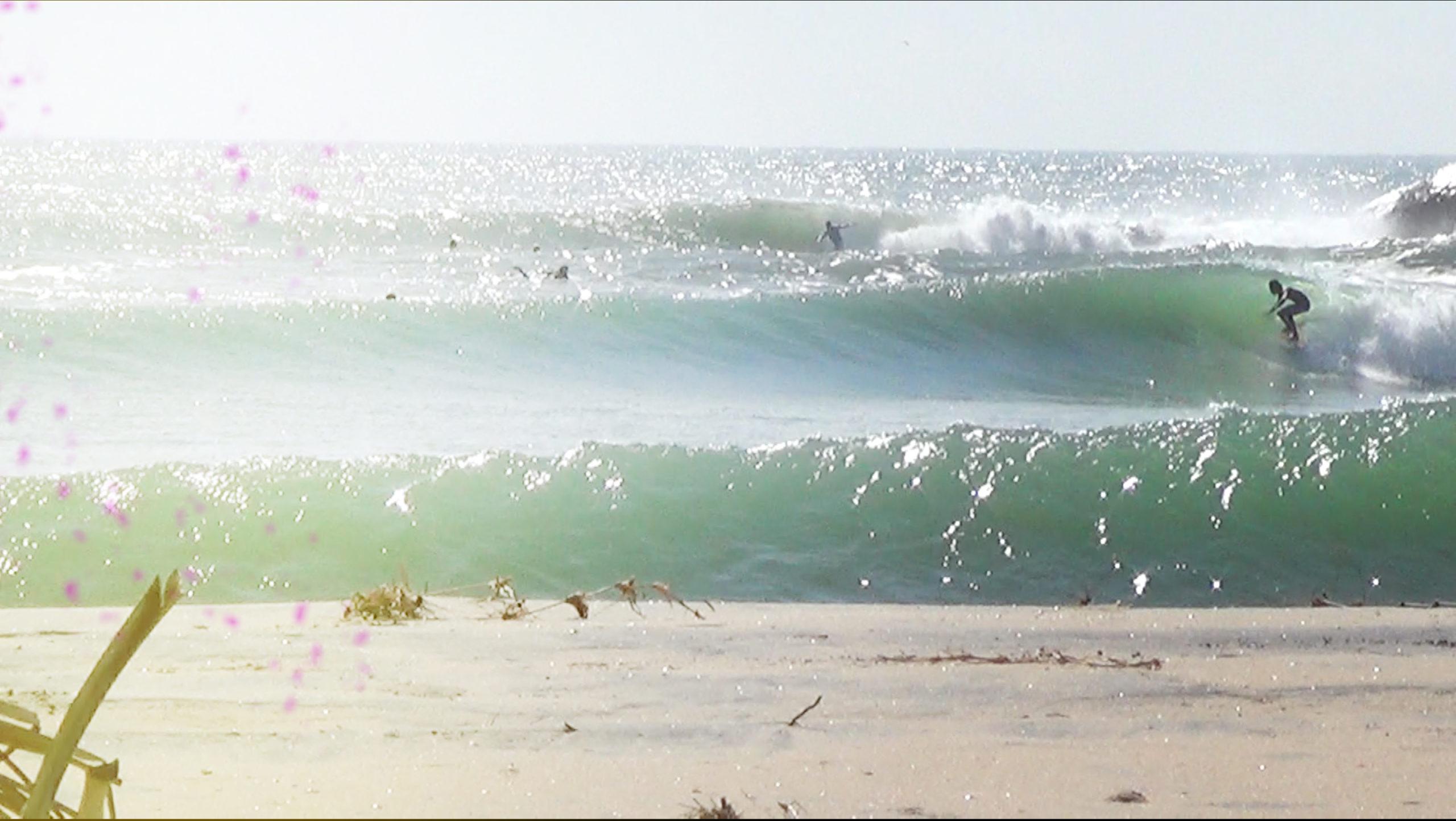 utum surf