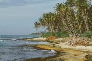 Sri Lanka-Hikkaduwa-Midigama-Aragum Bay-Sunshinestories-surf-travel-blog-IMG_7303