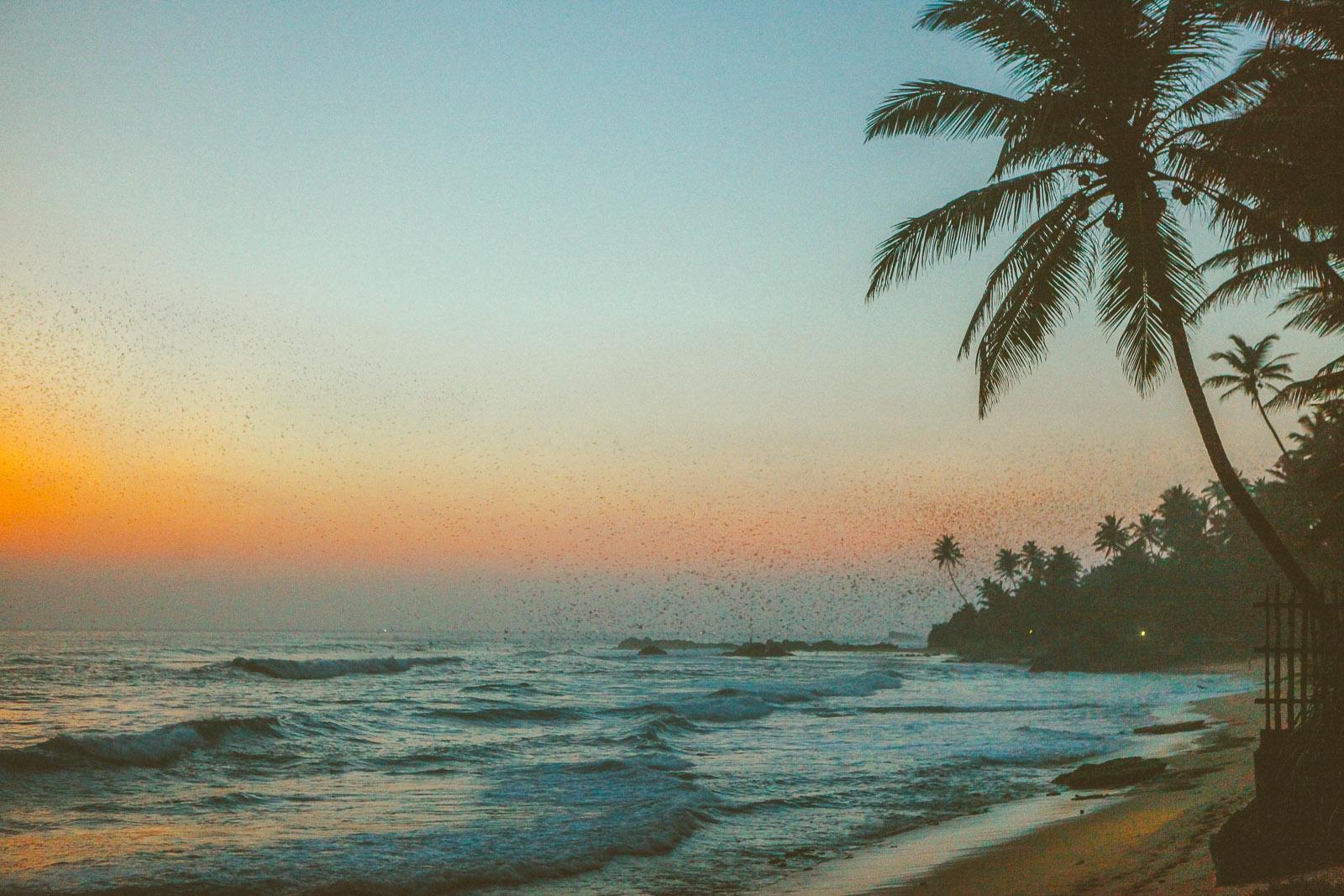 Sri Lanka-Hikkaduwa-Midigama-thalpe-era-beach-jetwing-surf-travel-blog-IMG_8849