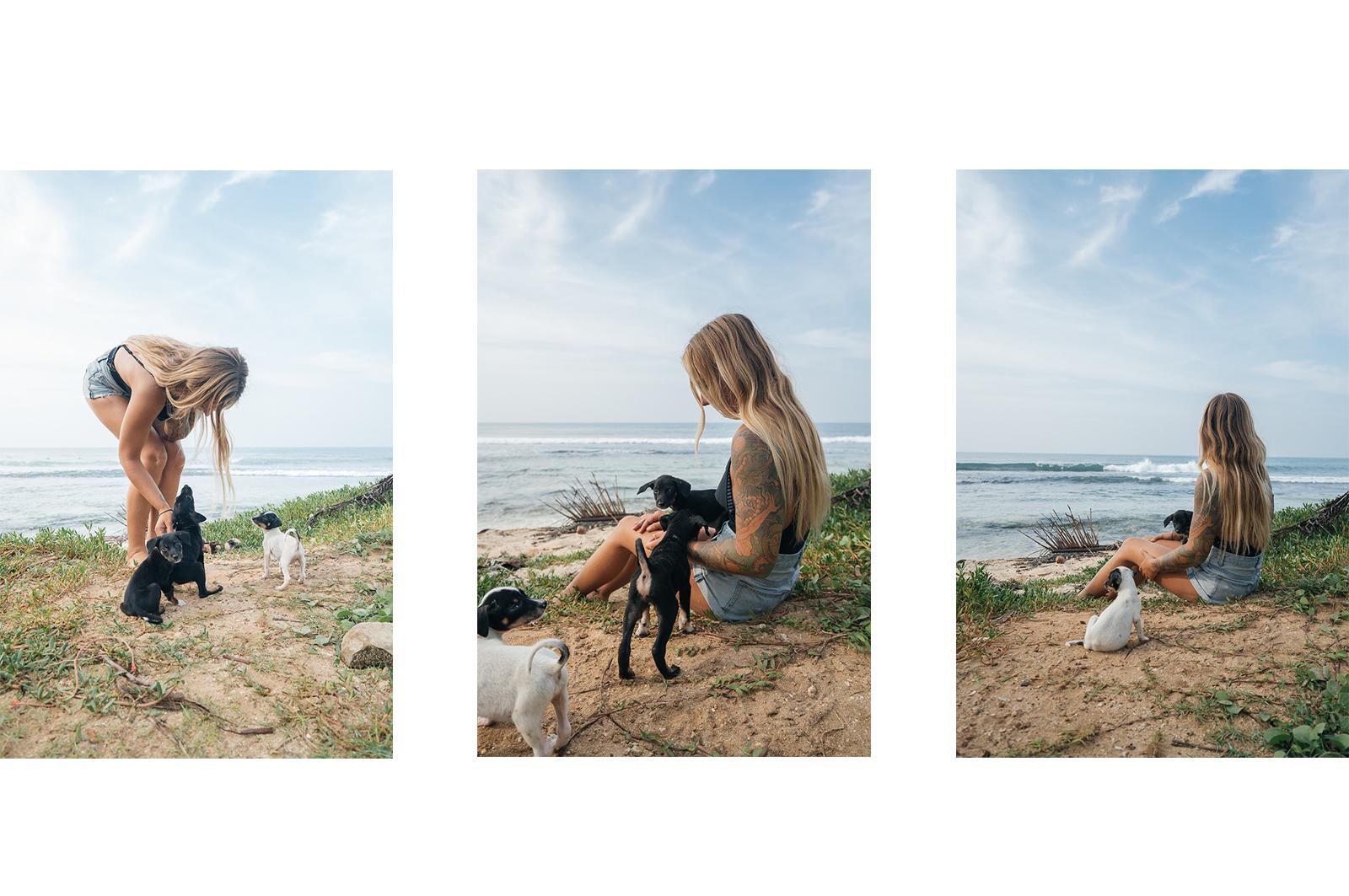 SriLanka_Dogs
