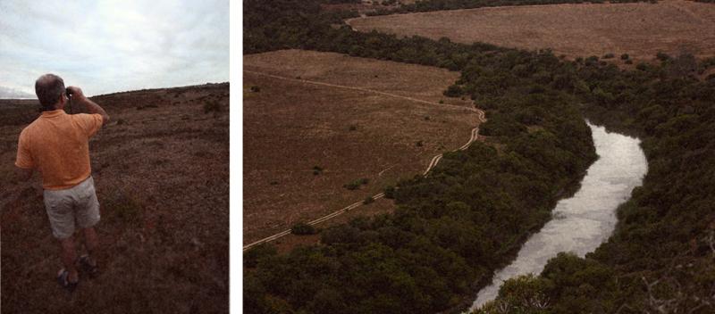 IMG_4681-Editdenstoraresan,-familjen,-safari,-sydafrika