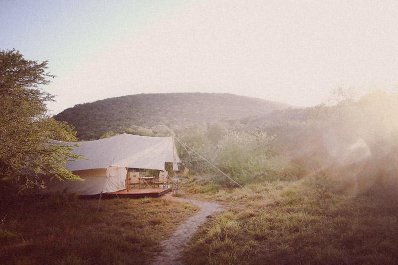 IMG_4830-Editdenstoraresan,-familjen,-safari,-sydafrika
