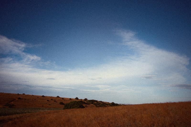 IMG_5290-Editdenstoraresan,-familjen,-safari,-sydafrika