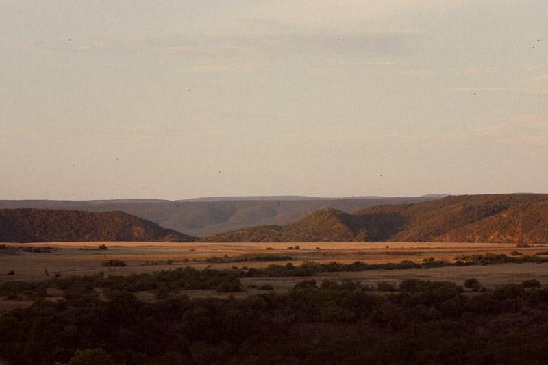 IMG_5391-Editdenstoraresan,-familjen,-safari,-sydafrika