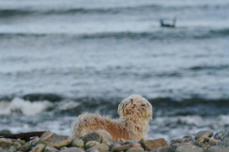 Sunshinestories-surf-travel-blog-IMG_9830