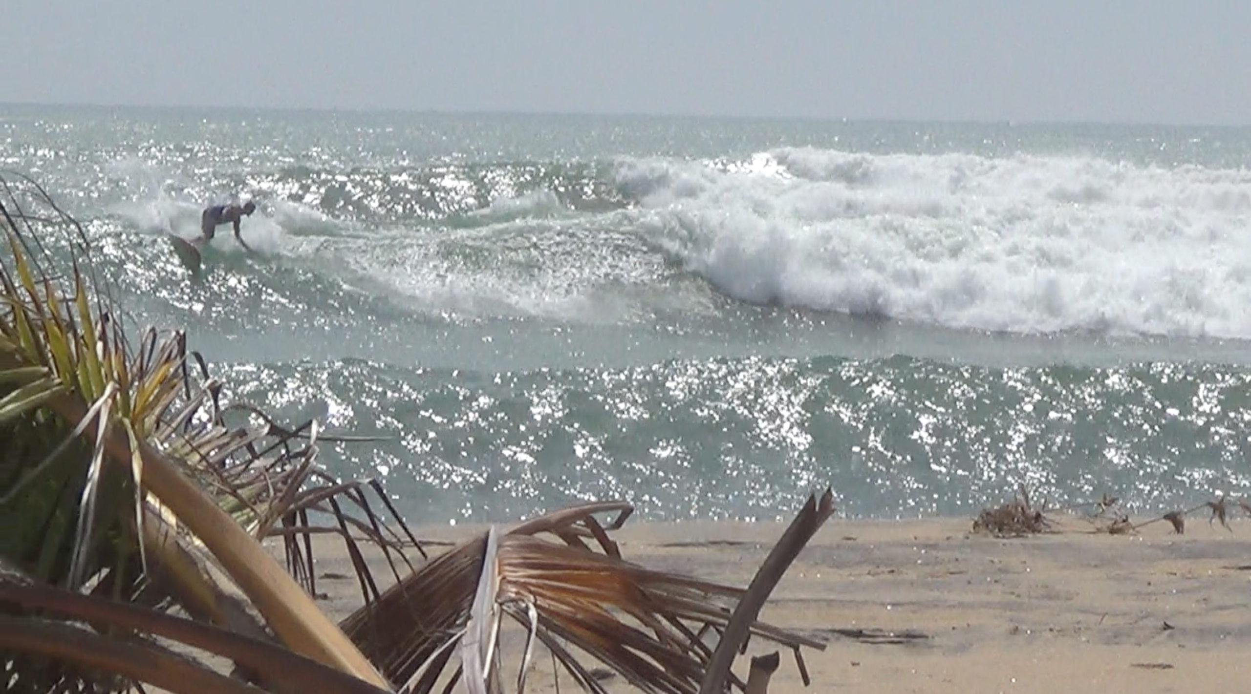 petter surf 2