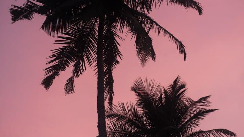 The Sunshinestories Guide to Southern Sri Lanka