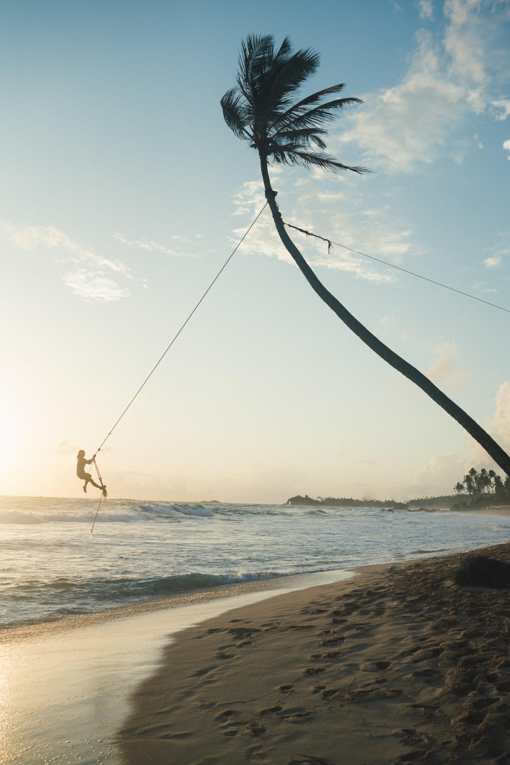coconut-swing-sri-lanka